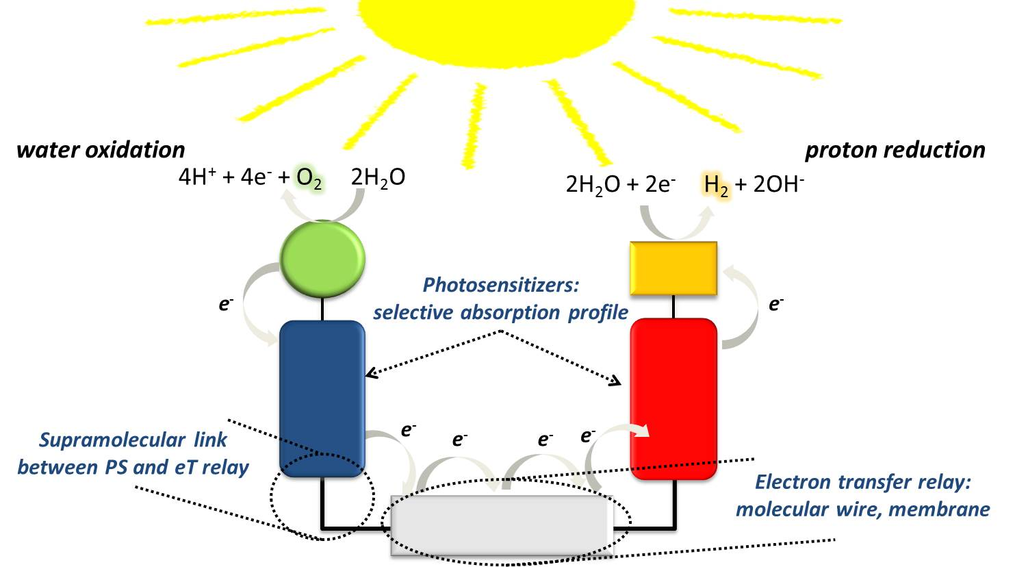 Artificial photosynthesis ccuart Image collections